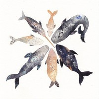 Whale Pod  Archival Print by unitedthread on Etsy
