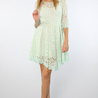 The Floral Mesh lace Dress in Pale Mint
