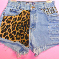 Cheetah Print/Studded High Waisted Shorts