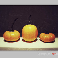 Fall Wall Decor, Kitchen Wall Decor, Pumpkin Photography, Still Life Digital Photography, Harvest Wall Decor, Retro Wall Decor