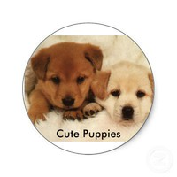 Cute Puppies Round Stickers from Zazzle.com