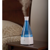 The Best Personal Humidifier