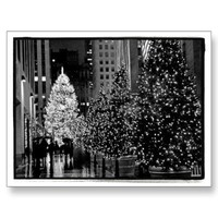 Rockefeller Center Christmas Tree Postcard from Zazzle.com