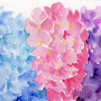 Original 3 Colors of  Hydrangeas  watercolor painting floral
