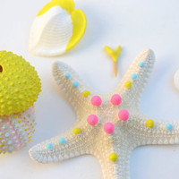 Neon Sea Urchin, Starfish, Seashells, Sand Dollar, Shark Tooth Collection - Color Dipped, Bright, Pastel and Neon, Beach, Nautical, Shapes