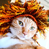 Lion Costume - Cat or Dog (Half Mane)