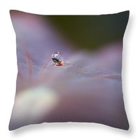 "Carrying A Raindrop 14"" x 14"" Throw Pillow for Sale by Priya Ghose"