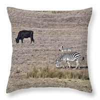 "Stripes and Solids 14"" x 14"" Throw Pillow for Sale by Priya Ghose"