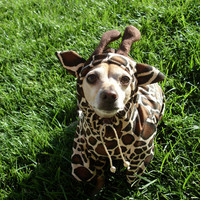 Giraffe Dog Pet Costume ALL SIZES AVAILABLE