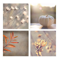 Grey winter photography - Grey Dusk print pack of four 5x5 inch fine art photos - grey orange yellow tangerine