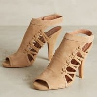 Jeffrey Campbell Lorene Shooties