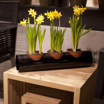 Scape Indoor and Outdoor 4-Inch Pot Holder System - Single Unit