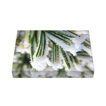 Snow-Covered Tree Branch Canvas