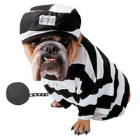 Pets Deluxe Prisoner Costume