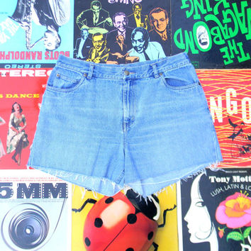 Vintage Denim Cut Offs - 90s Light Wash Jean Shorts - High Waisted, Frayed, Distressed NORDSTROM BRAND Shorts, Plus Size Size 14, Plus Sized