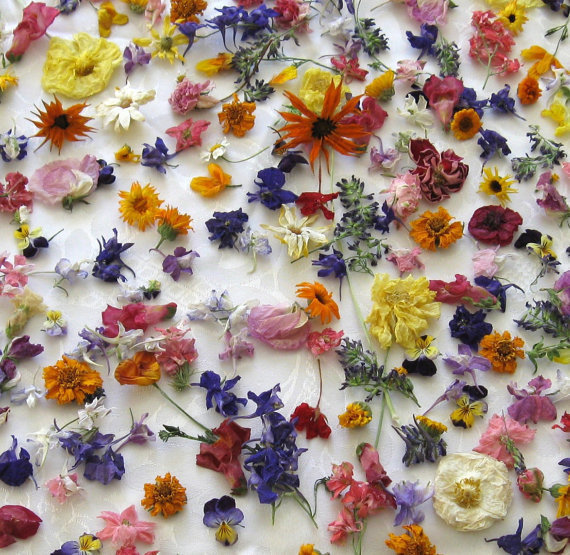 400 Dried Flowers Wedding confetti by pleasanthedges on Etsy