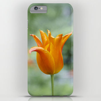 Tulips in orange iPhone & iPod Case by VanessaGF