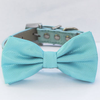 Sky ,Blue Dog Bow Tie -Chic and Elegant Bow tie with high quality leather collar-Something blue, blue wedding accessory