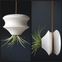 2 in 1 Hanging Air Planter