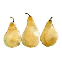 Pears Reproduction print of original watercolor by TheJoyofColor