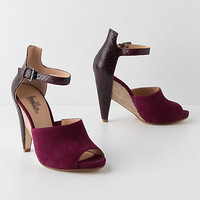 Lamia Inlay Pumps