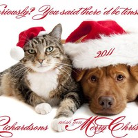 Photo Christmas Card Pets Dog Cat P.. on Luulla