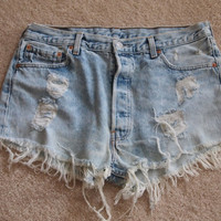 Vintage Cuttoff Denim Shorts