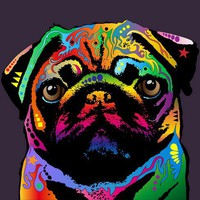 Pug Dog Art Prints Canvas