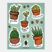 Cute Succulent Stickers