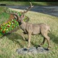 Animal Statues | Grand-Scale Black Forest Garden Deer