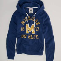 Michigan Vintage Hooded Popover | American Eagle Outfitters
