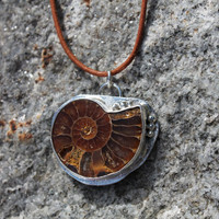 Fossil pendant. Sterling silver. Ammonite shell necklace. bezel set fossil. Organic. Rustic. Ocean.beach. Warm colors