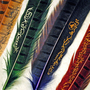 Slytherin Hogwarts House Quill by FlourishAndBlotts on Etsy