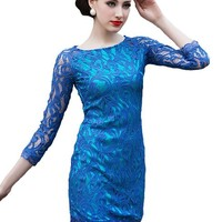 Bow Back Long Sleeve Above Knee Blue Lace Bodycon Mini Dress (S)