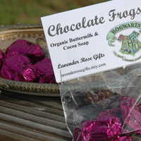 Harry Potter Inspired Chocolate Frogs Organic by lavenderrosegifts