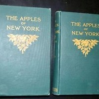 THE APPLES OF NEW YORK, VOL 1 and 2 ,Beach/Booth/Taylor,J.B. Lyon, 1905 1ST ED