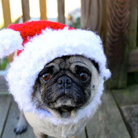 Dog Hat - Santa Christmas Cheer/ Made to Order