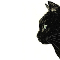 $20.00 Cat Art  Black Cat with White Whiskers Print by corelladesign