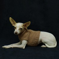 Mauve Wool Small Dog Sweater Knit Warm