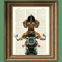 Dachshund Art Print Doxie Danger Motorcycle by collageOrama
