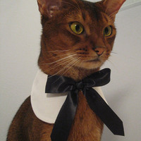 White round collar with black satin ribbon tie