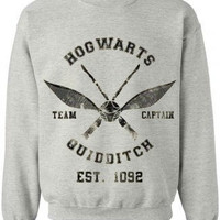 Hogwarts Quidditch