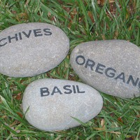 Herb Garden Engraved Stone Markers by mainlinedesigns on Etsy