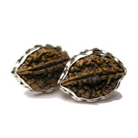 Rudraksha Seed in Oval and Sterling Silver Cufflinks