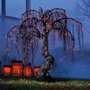 Spooky Halloween Willow Tree - Grandin Road