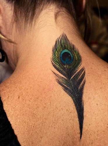 peacock feather :)
