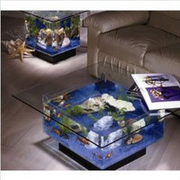 Amazon.com: Aqua Coffee Table 675 Aquarium: Home & Garden