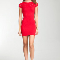 Femme Lace Bodycon Dress - WEB EXCLUSIVE