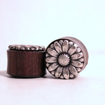 One of a Kind Daisy Reversible Saba Wood Plugs - 7/8 Inch 22mm
