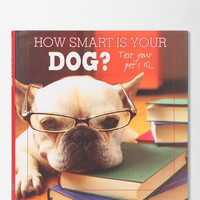 How Smart Is Your Dog? Book